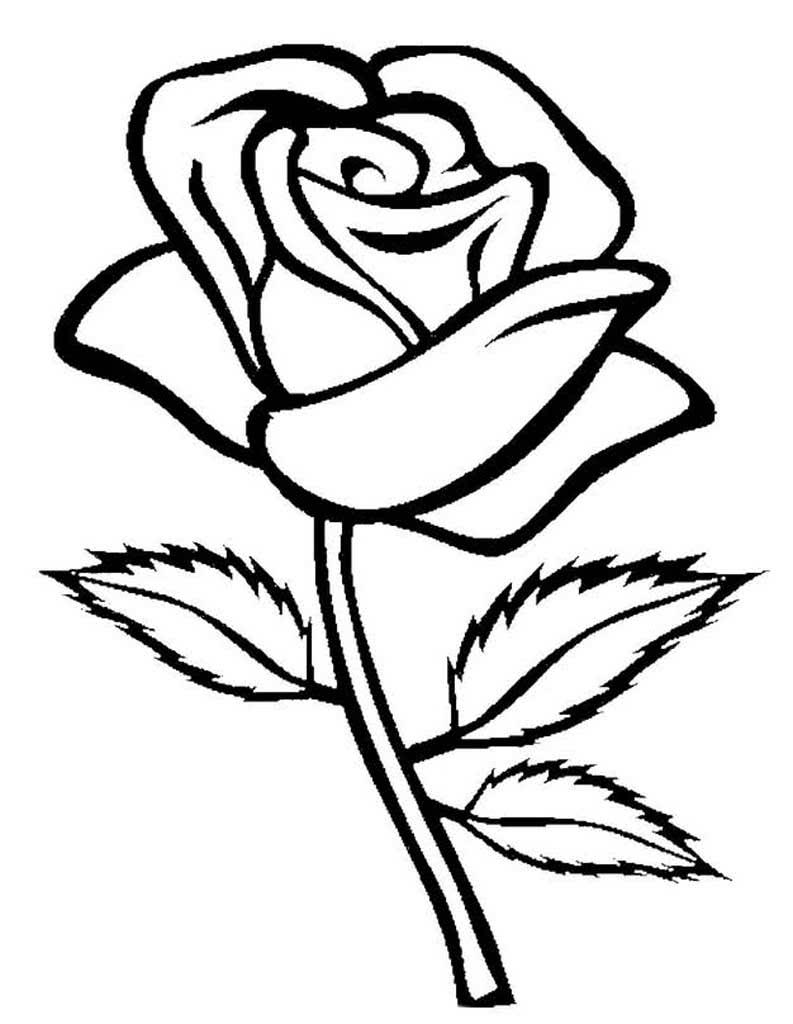 Праздничные картинки с розами кукурузу
