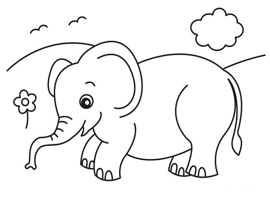 Картинки для раскрашивания слон
