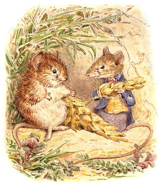 Иллюстрации к сказке про мышонка